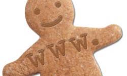 internet-cookie-ch-250x150